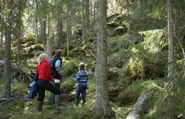 Familj på utflykt vid Trollberget i Ekopark Färna.