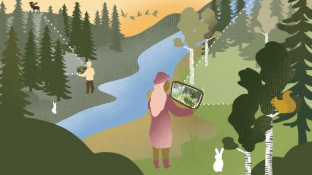 Med naturen och människan som uppdragsgivare har designstudenter undersökt nya perspektiv inom design och skogsbruk.