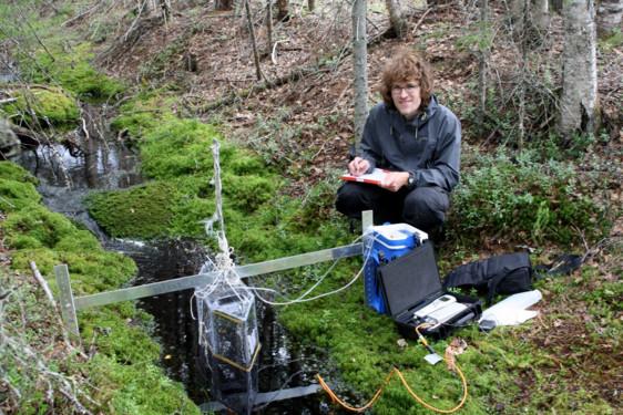 Marcus Klaus mäter koldioxidutsläpp från en skogsbäck.