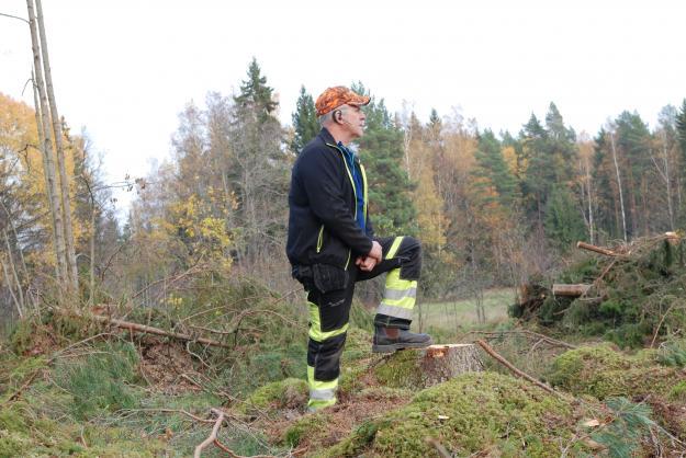 Kolbjörn Kindströmer,Vice ordförande Skogsentreprenörerna, vill att regeringen ska ta brandutredningen på allvar.