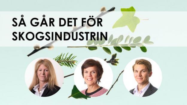 På bilden från vänster: Kerstin Hallsten, chefsekonom, Katrin Heinsoo, rådgivare - papper och massa, och Jakob Andrén, marknadsanalytiker - trävaror.