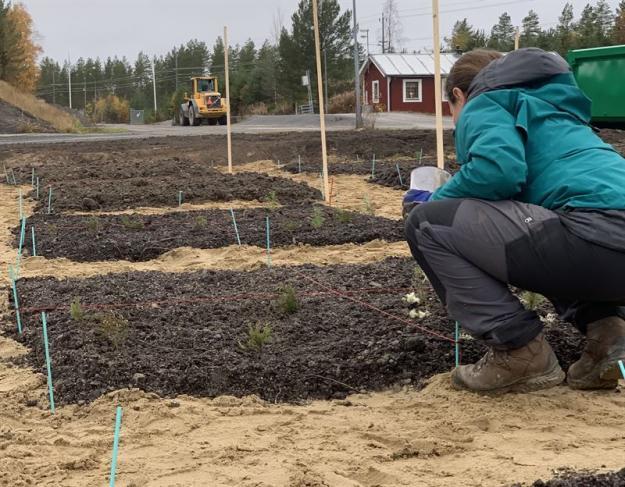 Ecogain och Ragn-Sells har påbörjat ett pilotprojekt där man tillverkar jord baserat på restprodukter från skogsindustrin.