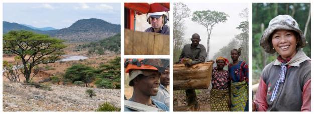 Skogsstyrelsen ska leda ett Sida-finansierat program om hållbart skogsbruk i låginkomstländer, som Vietnam och Nepal.