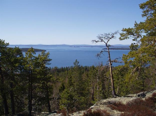 Långrevelsberget i Ekopark Honrslandet utanför Hudiksvall.