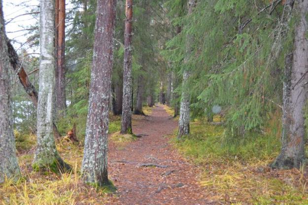 Knapperön är ett uppskattat område för vandring och friluftslivs som nu skyddas för att bevara naturvärden.