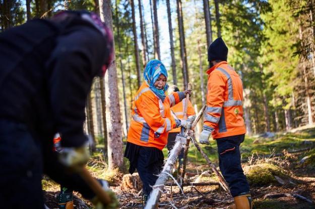 Redan nu är 200 anställda runt om i Sverige för att utföra naturnära arbeten som att sköta naturområden.