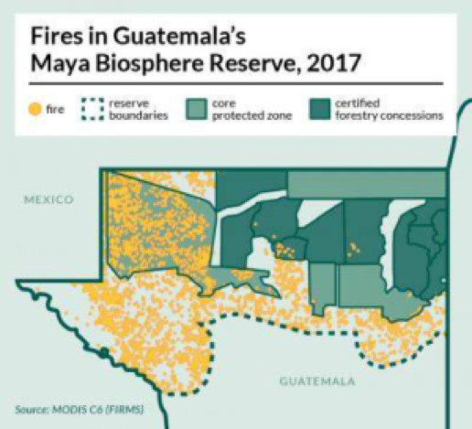 En satellitbild över Guatemalas Maya Biosphere Reserve visar hur bränder – som ofta beror på avskogning till förmån för jordbruk – spred sig under 2017 års torrperiod. De mörkgröna områdena med knappt några bränder ingår skogskoncessionerna som brukas av lokalbefolkning som arbetar tillsammans med Rainforest Alliance.