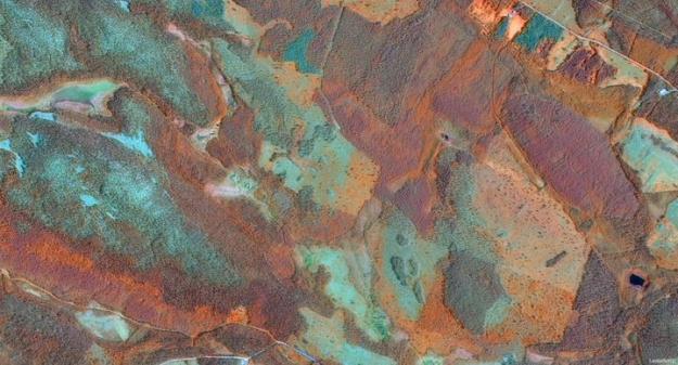 Satellitbilder ger viktig information om vegetationen och används i analyserna av riskområden och skador orsakade av granbarkborre.
