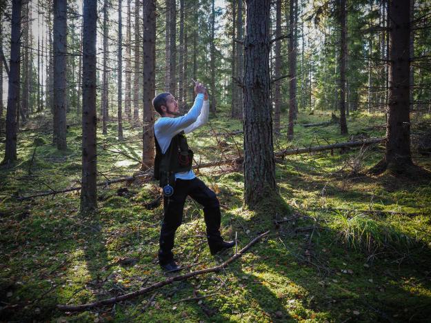Innovationen Arboreal Trädhöjd bygger på AR, Augumented Reality-teknik, och har tagits fram så att skogsägare enkelt ska kunna samla in och sortera skogdata digitalt.