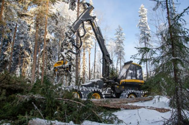 PEFC-certifierade skogsföretaget Orangutang, som specialiserat sig på naturvårdande skötsel, utför arbetet.