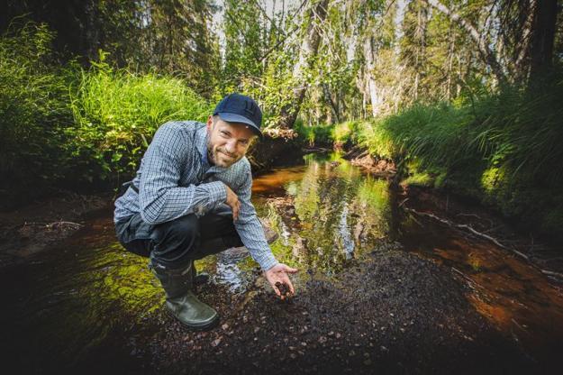 Jakob Bjerner, hållbarhetsansvarig i Sveaskog.
